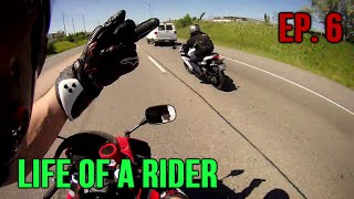 life of a rider episode 6 ft dumb people cute kid and more