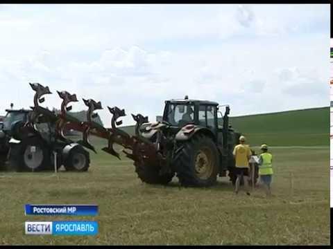 В Ростовском районе отпраздновали день Ярославского поля