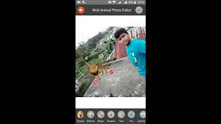 HOW TO MAKE A WILD ANIMAL PHOTO  IN ANDROID IN BANGLA