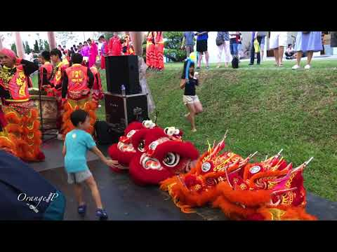 Lion Dance, Dragon Dance, Unicorn Dance at Woodlands. 17 March 2018 b