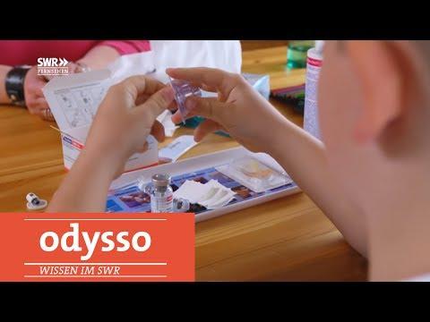 Wenn Blut kaum zu stoppen ist (Hämophilie) | Odysso – Wissen im SWR