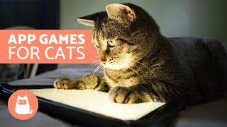 App Games for Cats - Catching mice
