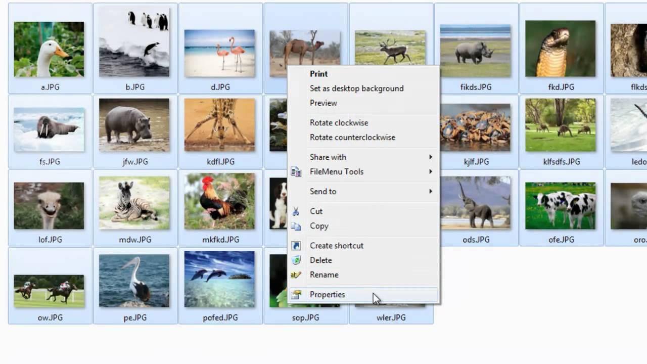 How to Remove EXIF Data from Photographs