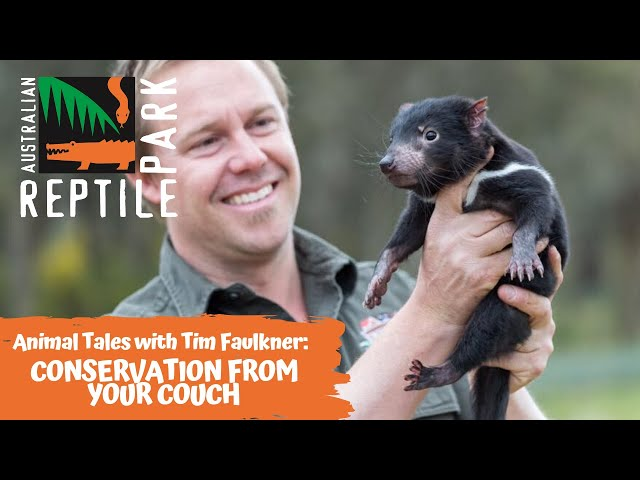 ANIMAL TALES WITH TIM FAULKNER | EPISODE 30 | CONSERVATION FROM YOUR COUCH!