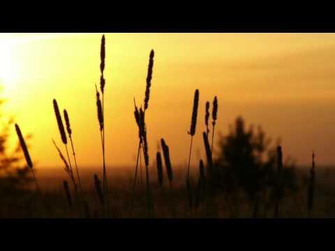 Steve Jablonsky-Infinite White