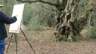 Drawing an ancient birch tree - Julia Sorrell at Foxley Wood, Norfolk Part I. .mpg