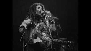 "Bob Marley & The Wailers  "" Live Zurich 80 "" HD (1/2)"