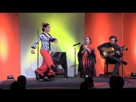 Flamenco, a Cultural Collective, a Gateway to Duende | Paula Sullivan | TEDxSanAntonio