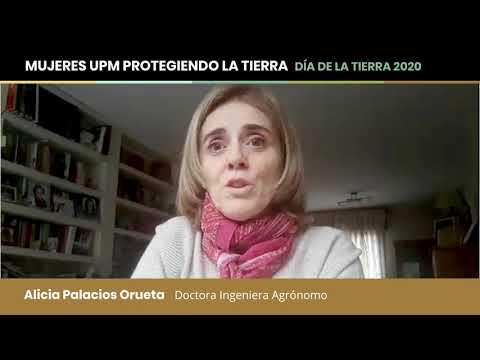 Alicia Palacios Orueta