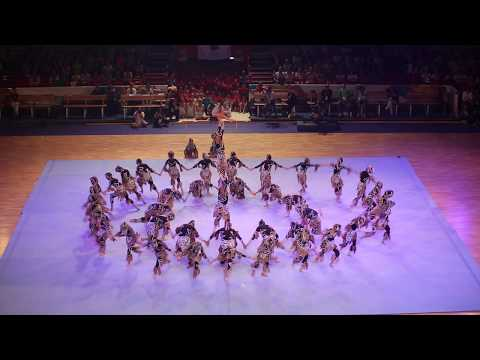 Zurcaroh Acrobatic Group / Austria / FIG Gala Helsinki - World Gymnaestrada 2015