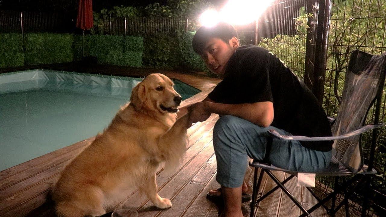 강아지 싫다던 친구가 술취해서 개에 빠지는 과정ㅋㅋㅋ