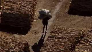 Manu Militari - Pour chaque goutte de pétrole // Videoclip