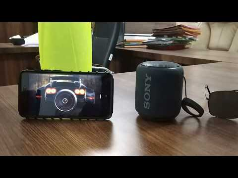 Realy Extra Bass Sony SRS-XB10/RC 10 W Portable Bluetooth Speakers