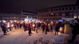 Markering mot pelsdyrhold - NOAH Lillehammer - 12/11-16