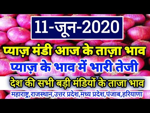 कांदा-बाजार-भाव-तेजी-(-11-/06-/2020-)-|-prices-of-onion-in-india(-maharashtra)|-pyaaj-bhav