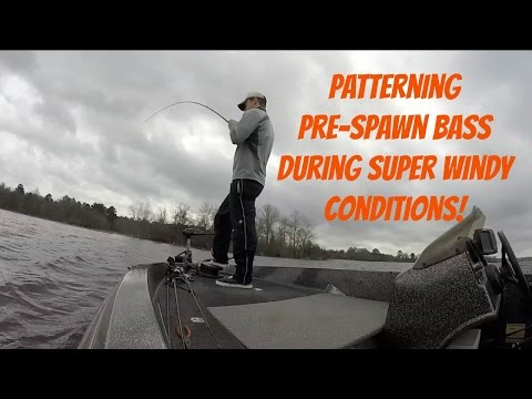 How Cold Fronts Affect Bass During Spawn!