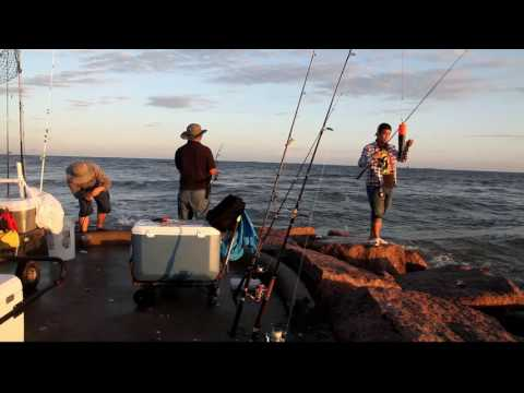 Tommy Fishing Show - Mua Ca Du - Galveston 2016 Full HD