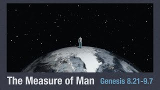 'The Measure of Man'