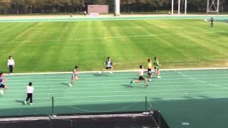 2011-2012九龍東區小學校際田徑比賽下午場1/2初賽片段LSK