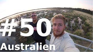 Great Ocean Road!    Work & Travel Australien #50