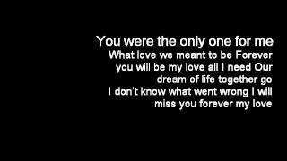 何雁詩Stephanie Ho – The Only One[殭Blue Veins插曲] lyrics