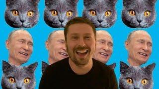 Котики, Путин и лопата