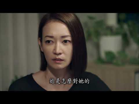 神偷 奶 爸 3 線上 看 中文 版