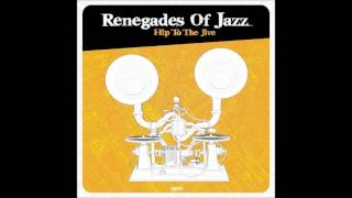 Renegades of Jazz - Black milk