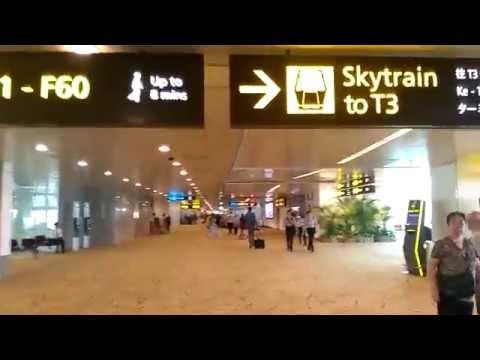 Changi International Airport T2