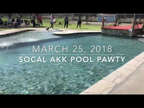 March AKK Pool Pawty (Full Version)