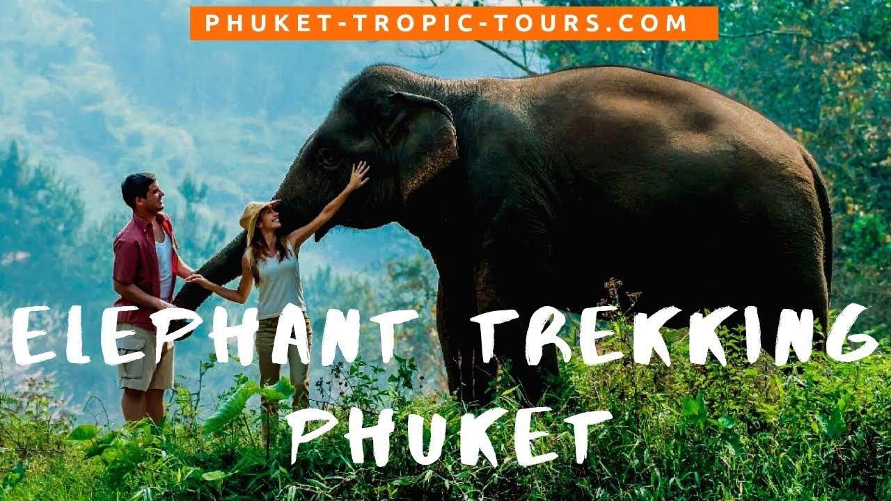 Elephant Trekking Phuket video overview: