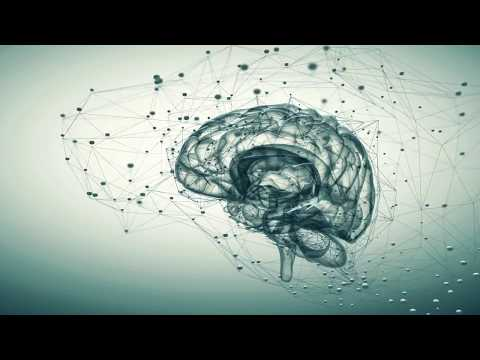 Dr. Oliver Hill - The Nature of Consciousness