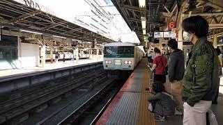 185系鎌倉紅葉号横浜発車