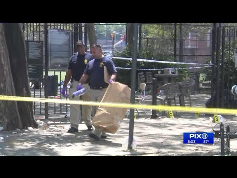 NYPD Seeks 2 Shooters In Fatal Brooklyn Playground Shooting