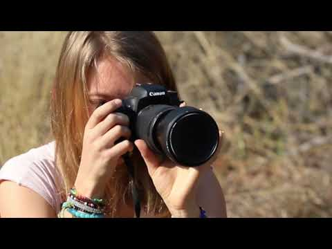 wildlife-photography-volunteering-in-south-africa-with-african-impact
