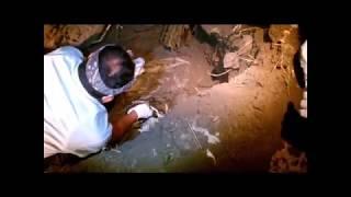 Bongkar kuburan cari mayat