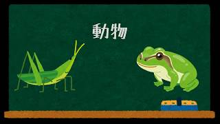 動物について問題を出しています。 テキスト版 : https://juken.link/%e...