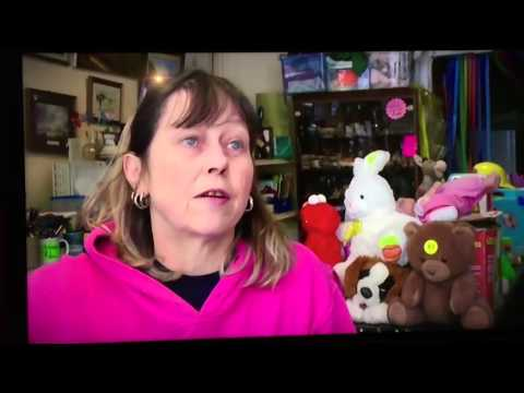 ITV Westcountry News Charity Shop Thefts