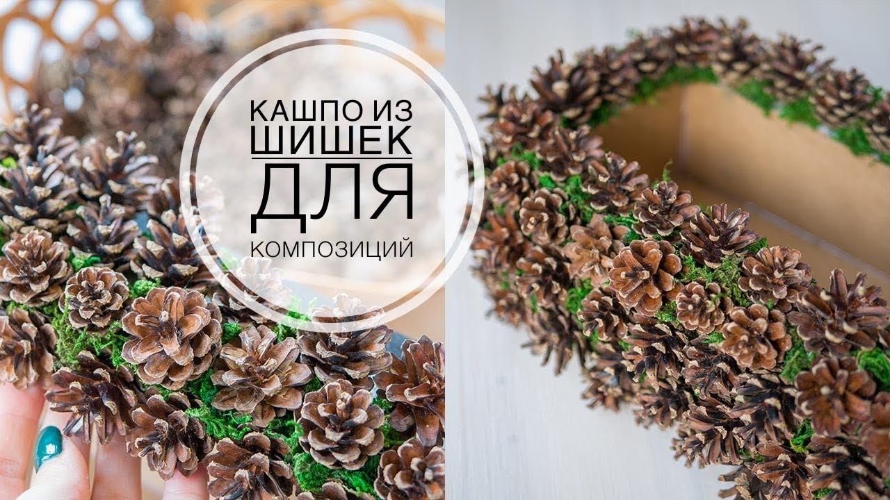 Декор сосновыми  шишками DIY Tsvoric