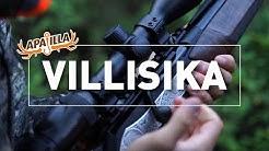 Jakso 7/2019 - Villisika
