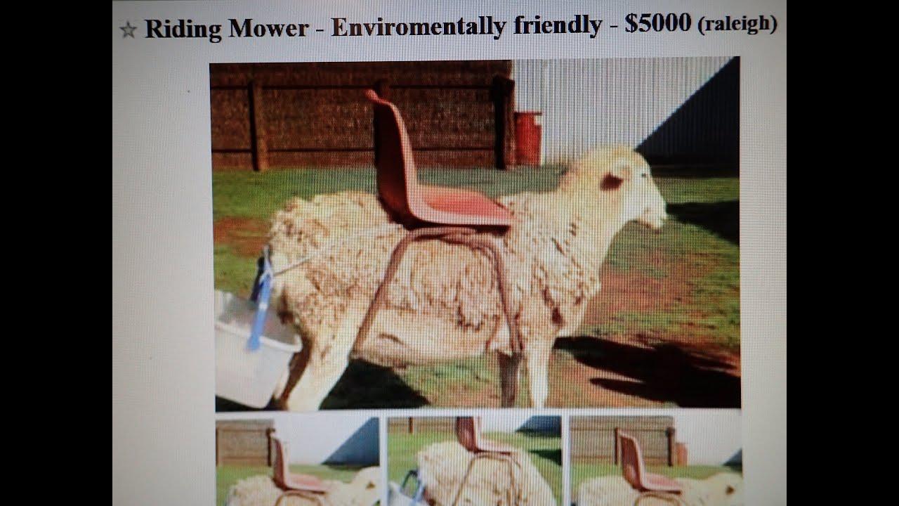 Funny Craigslist Ad - Environmental Friendly Riding Lawn ...
