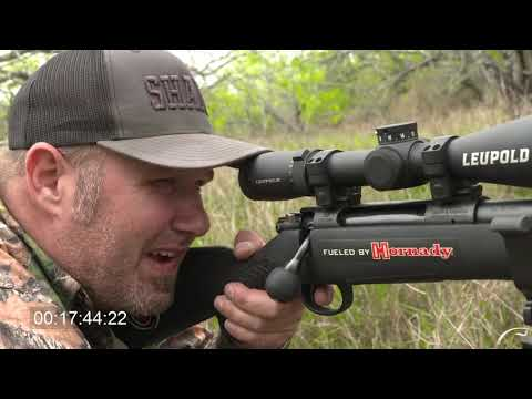 Pigman Breaks Out .300 Win Mag And SMOKES Nilgai