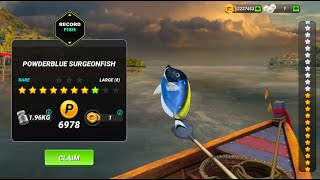 Madagascar. New Location. Gameplay. Fishing Clash