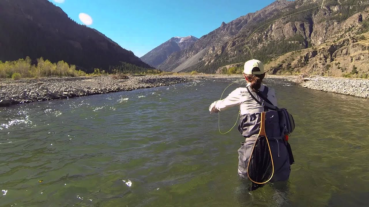 fly fishing cody wyoming youtube