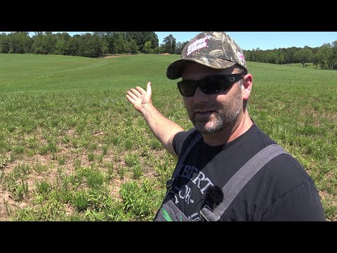 Diversify Your farm Income...How you can earn a passive income on your property!!
