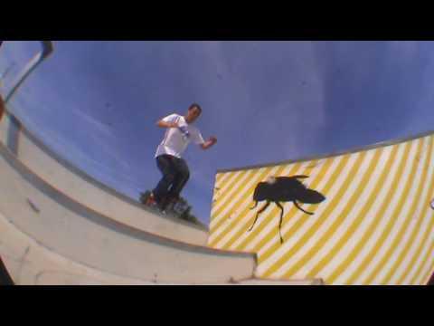 Dave Derby - Rollerblading