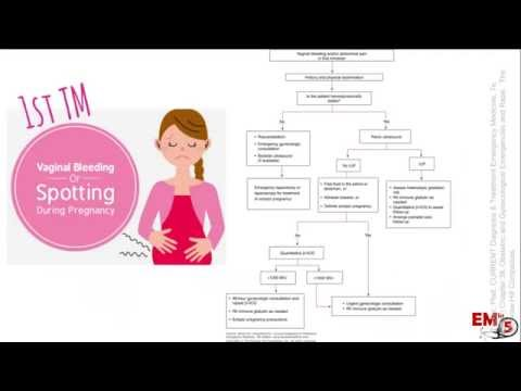 Pregnant Vaginal Bleeding 1st TM