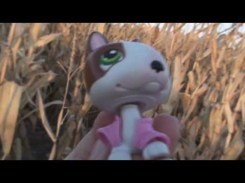 """Littlest Pet Shop: Kandy TV Episode #2 """"A Cornbelly"""
