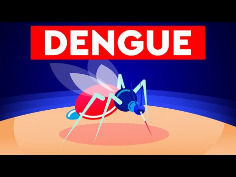 Dengue Virus: Commonest mosquito-borne viral infection in humans