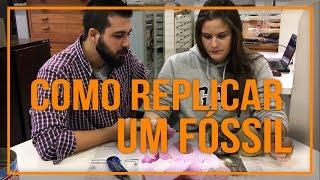 Baixar Como replicar um fóssil (alginato+gesso)